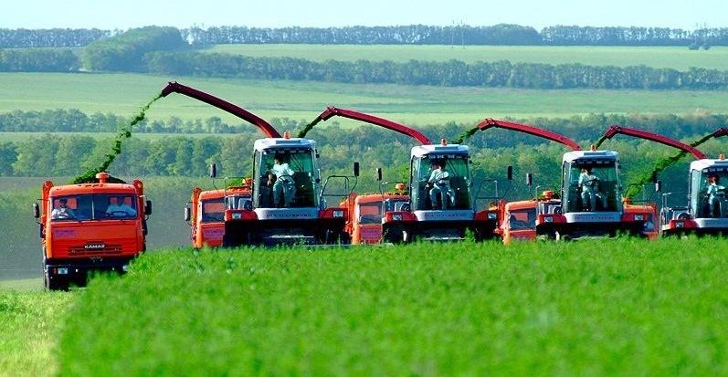 сельхозпроизводители